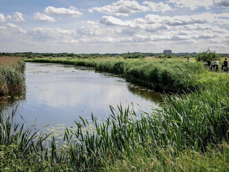 netherlands-river-denbosch