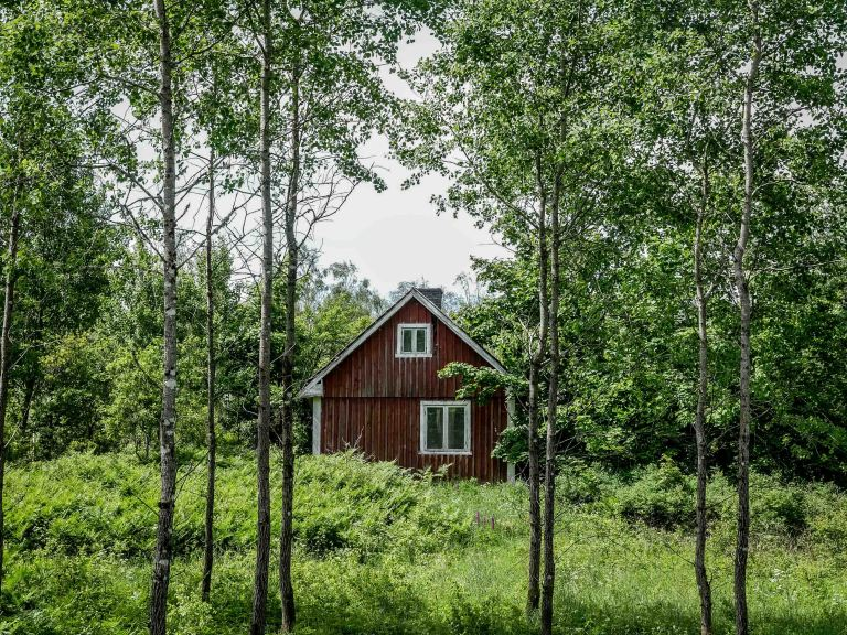 sweden-farm