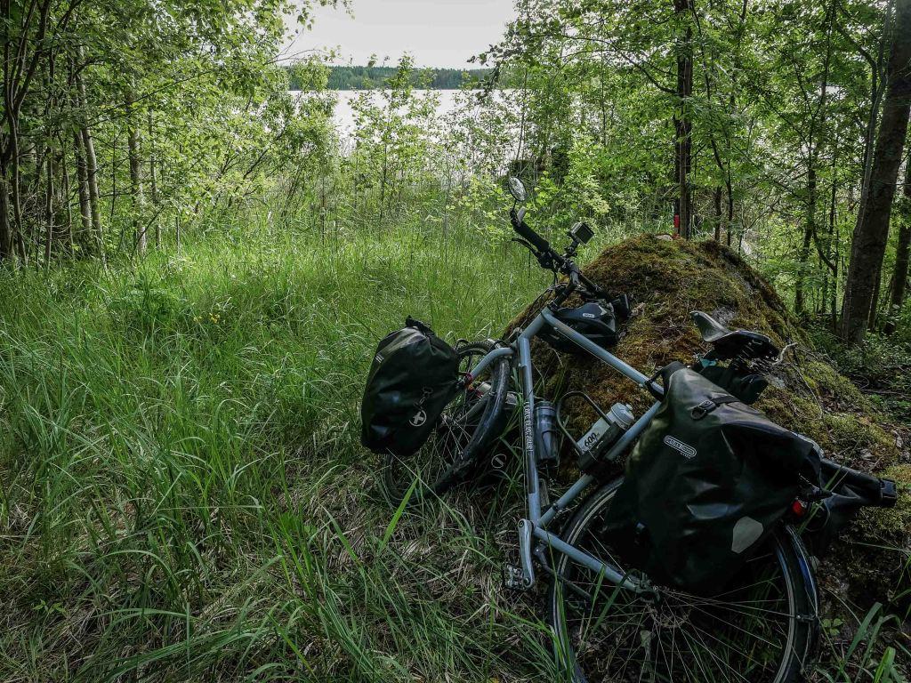 Finland-bike-forest