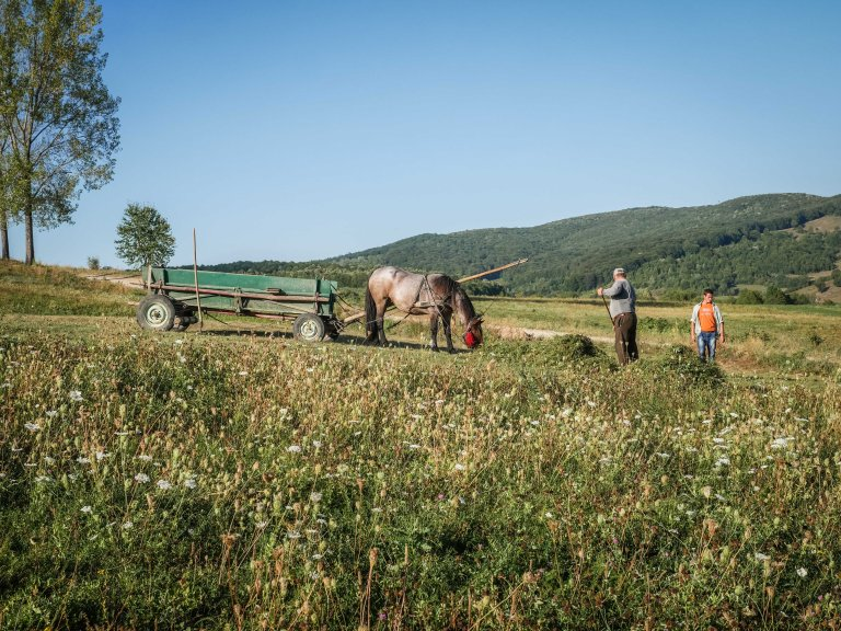 RoumanieMoldavie_15