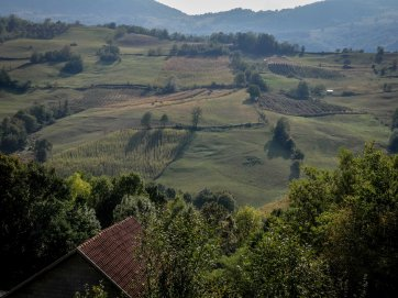 West Serbia