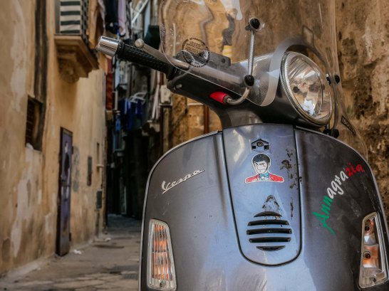 Speedy wasp in Taranto